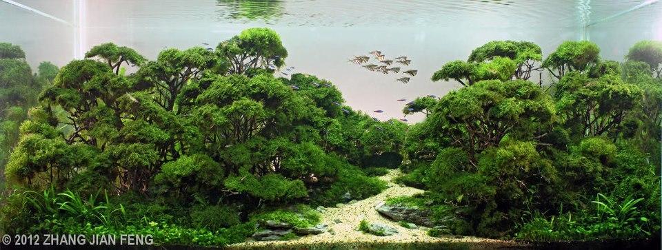 Inspirasi Amazon oleh Zhang Jianfeng 2012