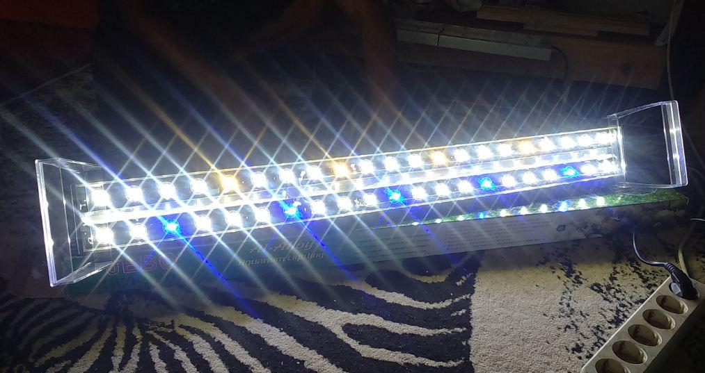 Tips Memilih Jenis Lampu Aquascape Atagaleri Net