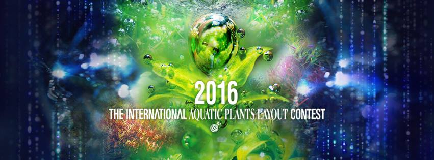The International Aquatic Plants Layout Contest 2016