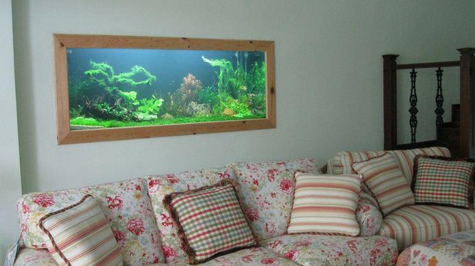 Aquarium Dinding Ruangan