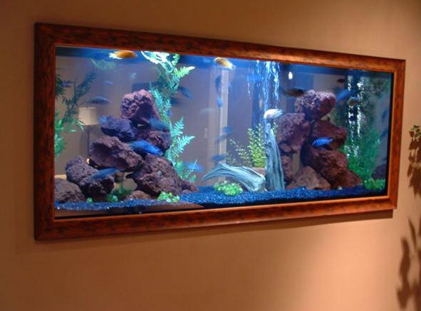 Aquarium Dinding 4