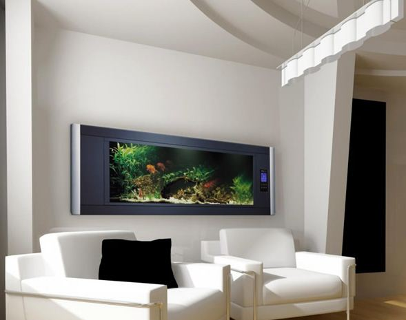 Aquarium ikan hias Dinding