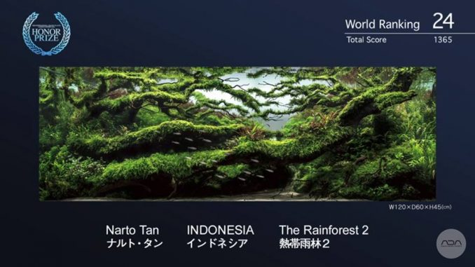 narto-tan-ind-the-rainforest-2