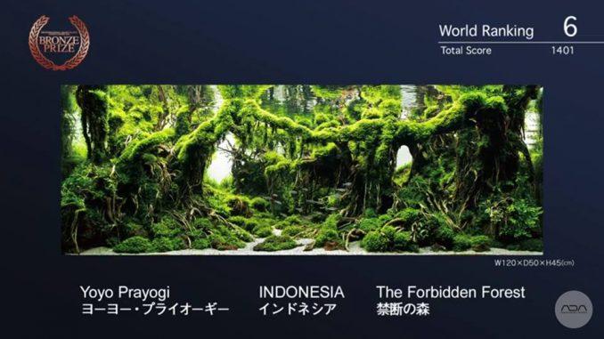yoyo-prayogi-ind-the-forbidden-forest