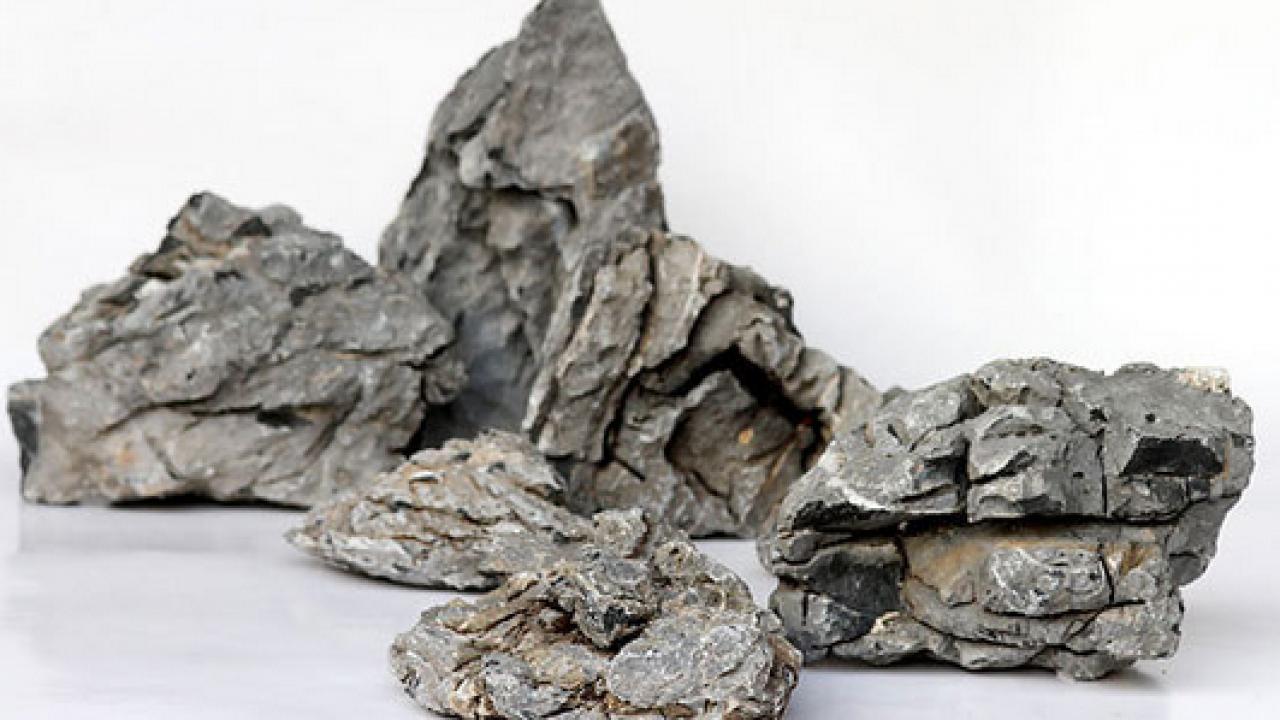 12 Jenis Batu Yang Cocok Dan Bisa Digunakan Untuk Aquascape Atagaleri Net