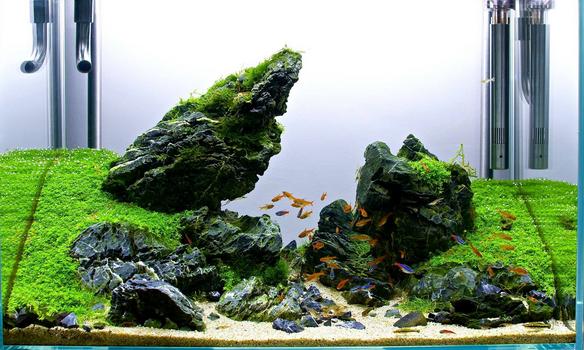 12 Jenis Batu yang cocok dan bisa digunakan untuk ...