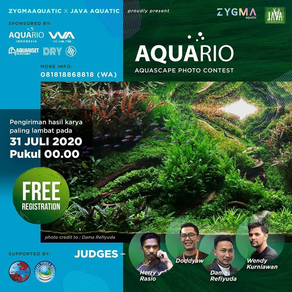 Aquario Photo Contest